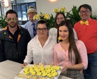 Daffodil Day Brisbane Lawyers Qld Solicitors